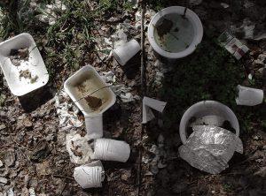 innaturali-picnic